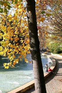 Paris, Jardin de Belleville, Bassin (c) Yves TRAYNARD 2005