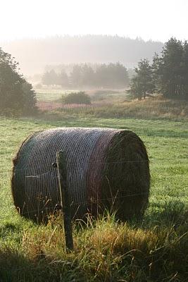 Montregard, Brume matinale (c) Yves Traynard 2007