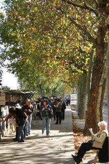 Paris, Quai de Montebello, Bouquiniste (c) Yves TRAYNARD 2005