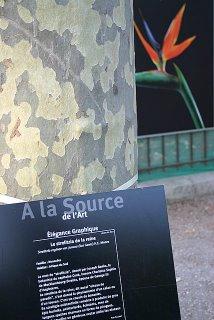 Paris, Jardin des plantes, expo A la source de l'art (c) Yves TRAYNARD 2005