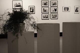 Paris, MJC Hauts de Belleville, Exposition 125, rue du Faubourg du Temple de Leïla Bousnina (c) Yves Traynard 2008