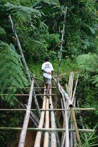 Cameron Highlands, Pont de bambous (c) Yves Traynard 2007