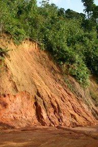 Cameron Highlands, Glissement de terrain (c) Yves Traynard 2007