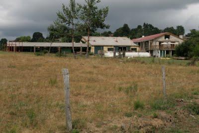 Montregard, une ferme bio (c) Yves Traynard 2009