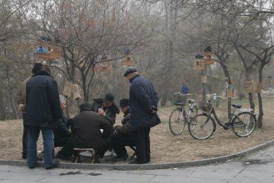 Baoding, La partie de cartes (c) Yves Traynard 2009