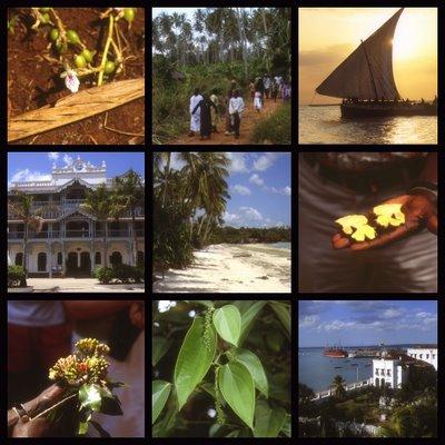 Zanzibar, Cardamome, gingembre, clou de girofle, poivre et vues de Stone town (c) Yves Traynard 2004