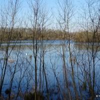 Le lac de Viry-Châtillon