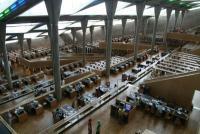 Alexandrie, la bibliothèque et le Prophète